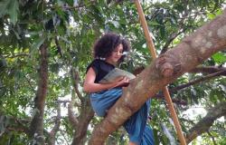 """Maria Helena Bressan de Souza, de 10 anos e sua primeira obra literária """"Um mundo de Aventura""""."""