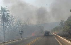 Fogo atinge vários pontos da mata às margens da estrada da Chapada