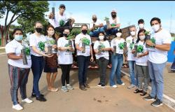 No dia Mundial do Meio Ambiente, prefeitura disponibiliza mudas de Ipê e Jacarandá para a população