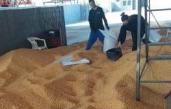 """Polícia prende """"empresário"""" com 10 toneladas de milho roubadas em MT"""