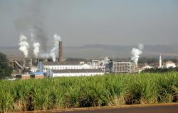 Potencial de MT para produção de etanol atrai investimentos de empresa norte-americana