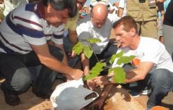 1ª Edição Movimento PlantAR- Residencial Nova Canaã