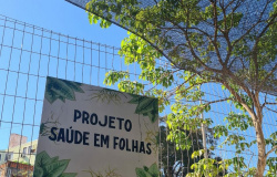 Projeto Saúde em Folhas
