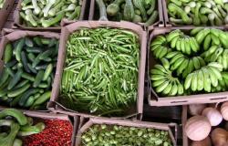 Cotação de preços auxilia pequenos produtores na comercialização de produção