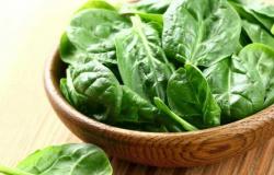 Conheça os alimentos que são aliados da longevidade
