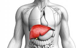 Marcelândia: Médico fala sobre doenças do fígado