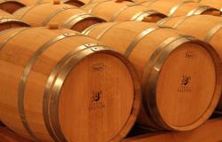 Rota do Vinho é opção para aproveitar finais de semana ou feriados