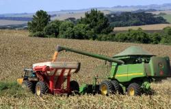 Governo projeta salto de 30% na produção de grãos do Brasil em 10 anos