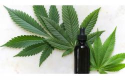Anvisa autoriza fabricação e venda de medicamentos à base de Cannabis