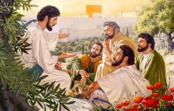 Jesus, o bom pastor Jo 10,1-10