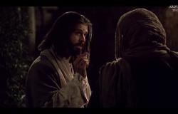 As últimas instruções aos discípulos - Jo 15,1-8