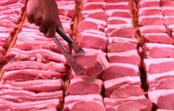 Exportação de carne suína do Brasil bate recorde em maio