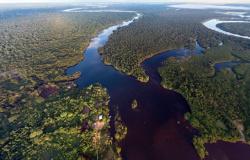 Brasil promete reduzir desmatamento a 'mínimo aceitável'