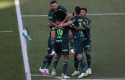 Com golaço de Patrick de Paula, Palmeiras vence o Santos no Morumbi