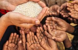Crise da Covid-19 deve fazer fome no mundo mais do que dobrar até o final de 2020