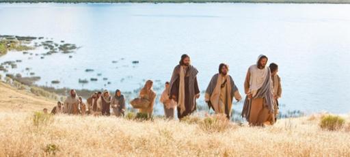 A cerca dos que seguem a Jesus Mt.8:19-22 e Lc 9,57-62