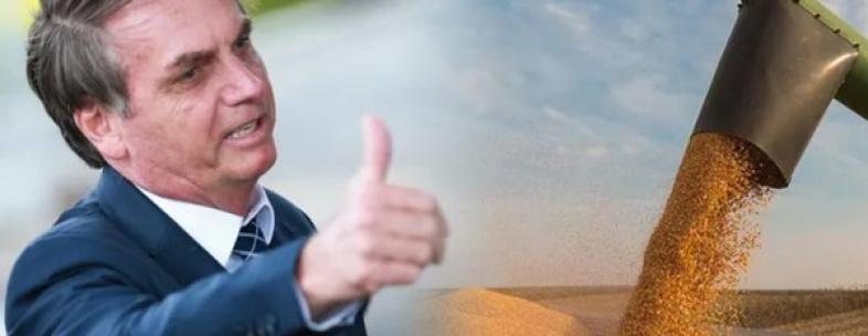Produção agrícola bate novo recorde e atinge R$ 361 bilhões