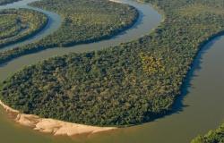 Brasil levará diplomatas estrangeiros à Amazônia