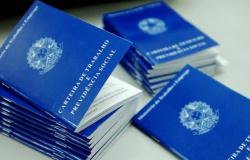 Brasil cria 313,6 mil vagas de trabalho com carteira assinada em setembro