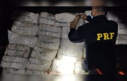 Brasil quebra recordes de apreensão e destruição de drogas