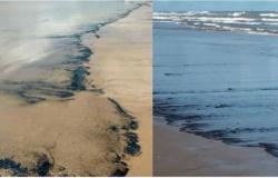 Justiça condena Petrobras a pagar R$ 200 mil por derramar óleo nas praias de Aracaju