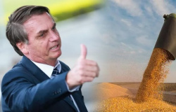 Exportações do agronegócio brasileiro vão superar US$ 100 bi em 2020