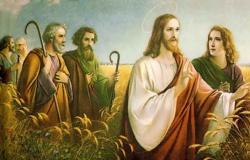 Jesus é Senhor do sábado Mt.12:1-8 Mc 2,23-28