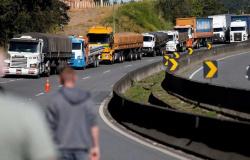 Caminhoneiros aprovam decisão de Bolsonaro de isentar diesel