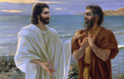 A confissão de Pedro Mc.8.27-33. Lc.9.18-22. Jo.6.20-70 e Mt 16,13-19