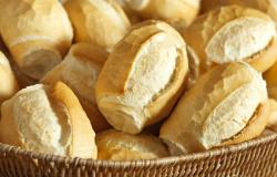 Pão francês, ou 'pão de sal', só poderá ser vendido por quilo