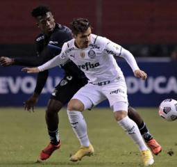 Time argentino perde, e Palmeiras é único com campanha 100% na Libertadores