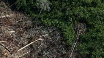 Desmatamento da Amazônia Legal cresce 171% em abril e é o maior em 10 anos