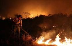 Governo Bolsonaro: Queimadas recorde e gasto de 0,4% do orçamento no Ministério do Meio Ambiente