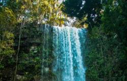 Programa turístico vai incentivar 300 mil pessoas a viajar e ajudar no giro da economia em Rondônia