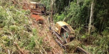 Áreas alvo de grilagem somam 35% do desmate na Amazônia entre agosto de 2018 e julho de 2019