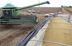Conab prevê produção recorde de grãos na safra 2020/2021