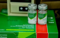 Campanha de vacinação contra a gripe segue até 9 de julho; menos de 20% do público-alvo foi imunizado