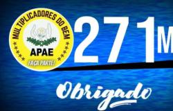Leilão em prol da APAE de Santa Luzia do Oeste arrecada R$ 271 mil