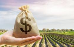 Crédito rural atinge recorde no primeiro mês da safra 2021/22