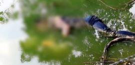 Corpo com marcas de agressões na face e cabeça, aparece boiando próximo da balsa, na zona rural de Machadinho
