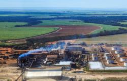 Usinas Itamarati renasce como UISA e inicia processo para se transformar na maior do Brasil