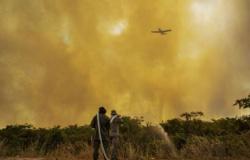 Descontrolado, incêndio no Pantanal ameaça hotéis da região