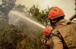 Com 40 mil hectares queimados, Barão de Melgaço decreta emergência