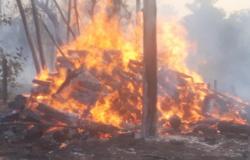 Fogo atinge 5 fazendas e reserva ecológica na região Norte de MT no mesmo dia e bombeiros recebem ajuda para combater as chamas