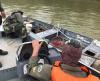 Equipes patrulham rios do Pantanal e resgatam animais feridos