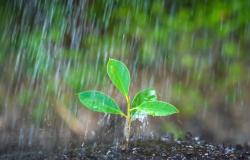 Chuva chega ao Norte de MT e calor predomina no fim de semana