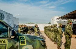 Dinheiro proveniente do tráfico de drogas será revertido em viaturas para Gefron