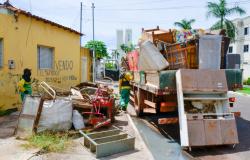 Mais de 200 servidores promovem ações de zeladoria no bairro Jardim Gramado