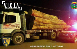 Gefron recupera veículos roubados e apreende madeira ilegal na faixa de fronteira