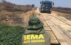 Caminhões-pipa despejam água em lagos secos para animais no Pantanal
